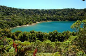 Arenal ezeras