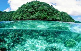 Similan salos nardymas