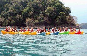 Vandenyno safaris