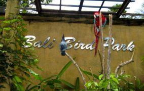 Bali pauksciu parkas