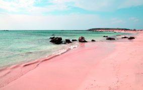 Pink-Sand paplūdimys