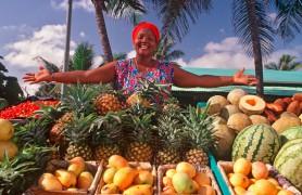 Dominikos Respublika 4