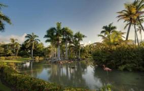 Melia Carribe Tropical ***** 1