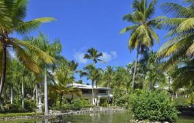 Paradisus Punta Cana ***** 37