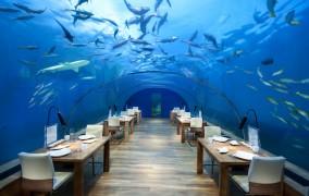 Conrad Maldives Rangali Island ***** 30