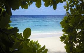 Dusit Thani Maldives ***** 17