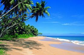 Šri Lanka 1