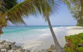 Turtle Beach Hotel Barbados **** 11